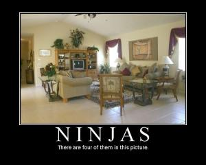 Ninjas are everywhere