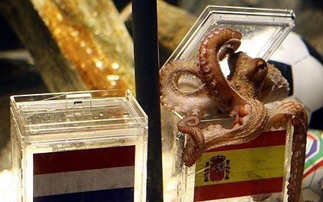 Paul the Octopus predicts World Cup Final
