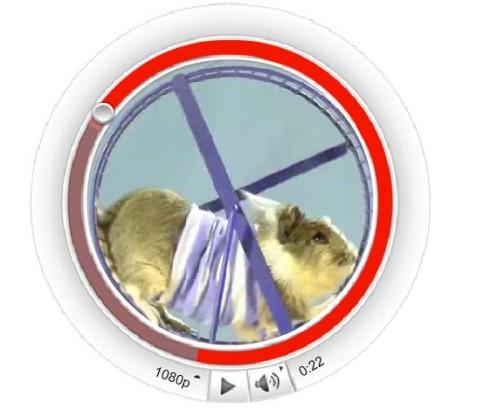 round youtube video cadbury hamster